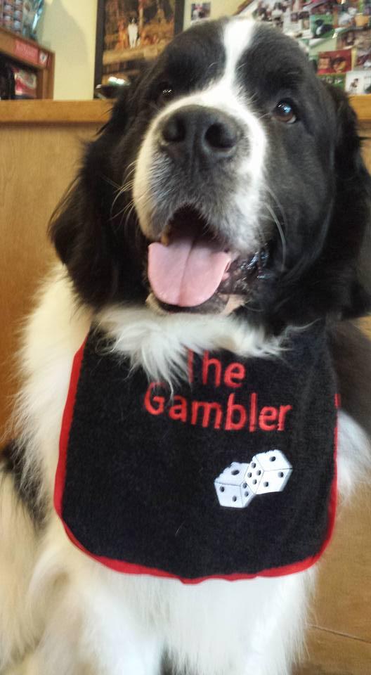 Winnie The Gambler birthday boy.jpg