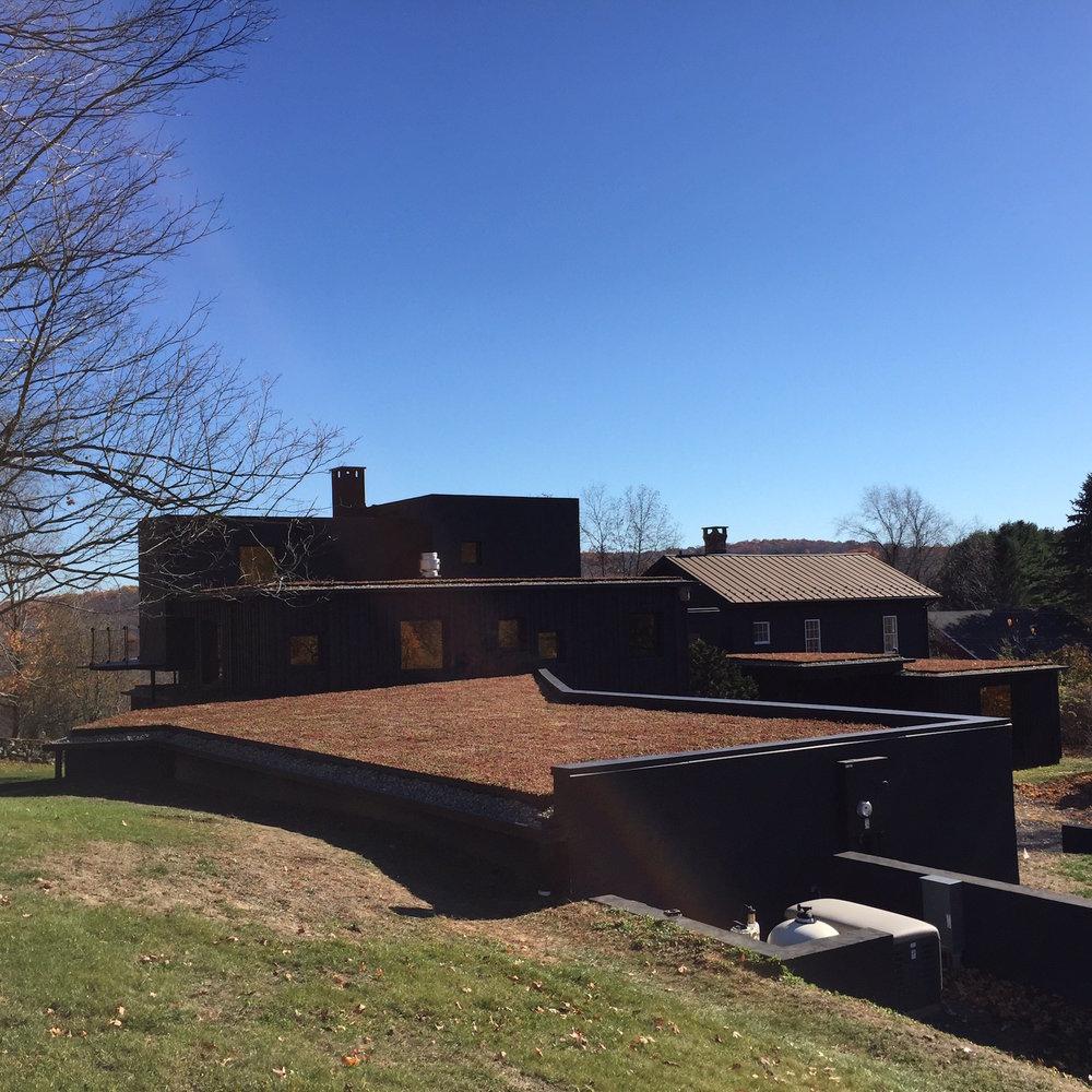 roxbury_highview_creations_green_roof.jpg