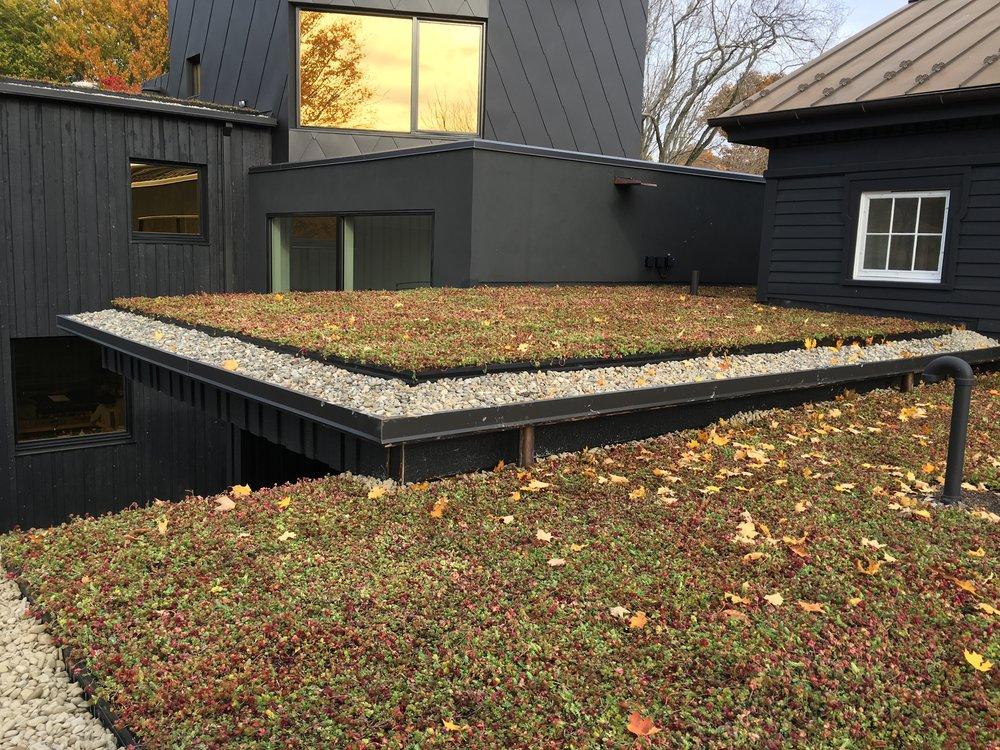roxbury_highview_creations_green_roof_(5).jpg
