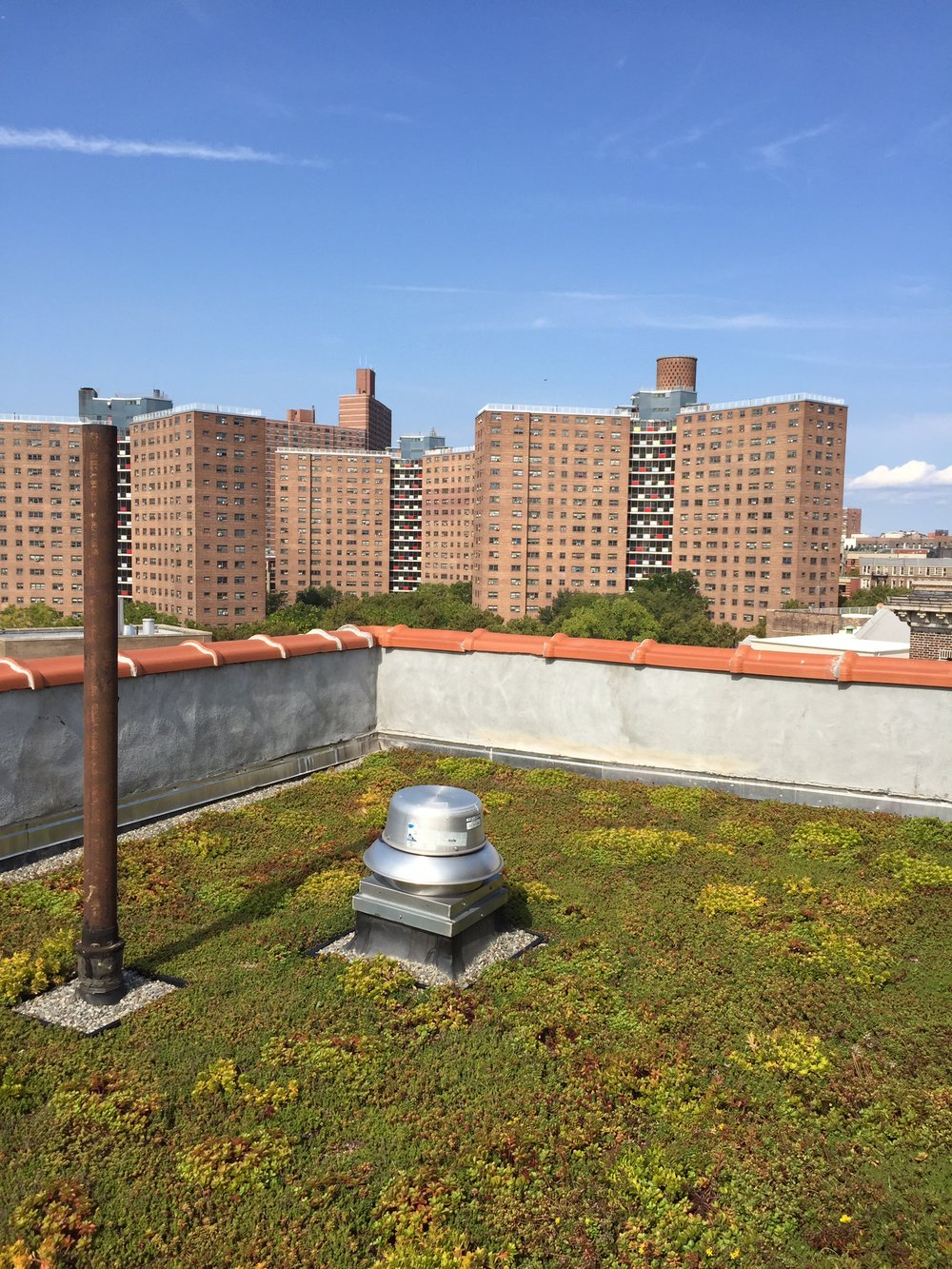 logan gardens nycswcd_green_roof_highview_creations_1.jpg