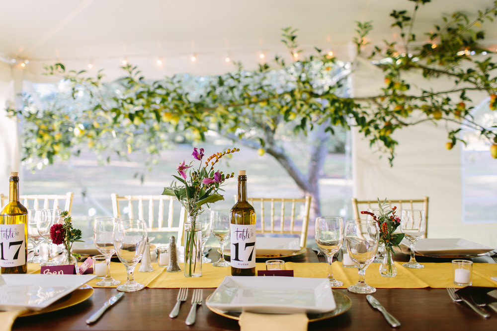 apple tree tent wedding reception orchard september