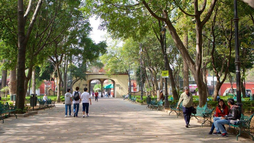The kick-back side walks of Coyoacán (from https://www.expedia.mx/fotos/ciudad-de-mexico/coyoacan.d179296/)