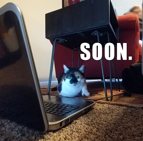 I can haz reign of terror?