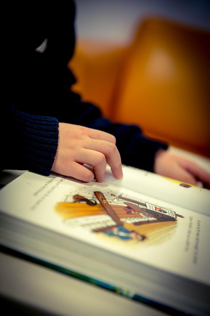 reading-1090736_1280.jpg
