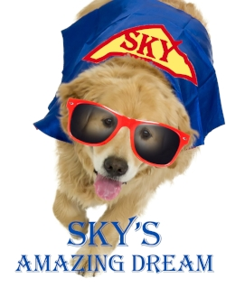 skys-amazing-dream.jpg