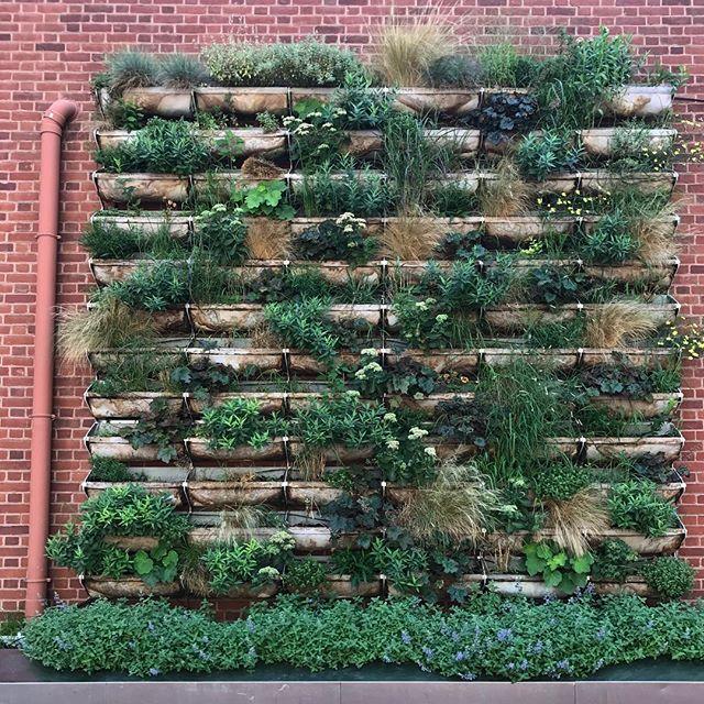 Urban inspiration #verticalgarden #urbanliving #greenbuilding #streetsofphiladelphia #architectsinthewild