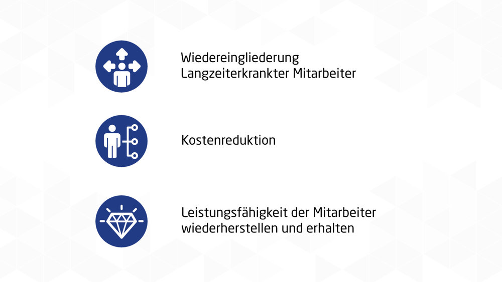 RPC Consulting GmbH BEM Professional