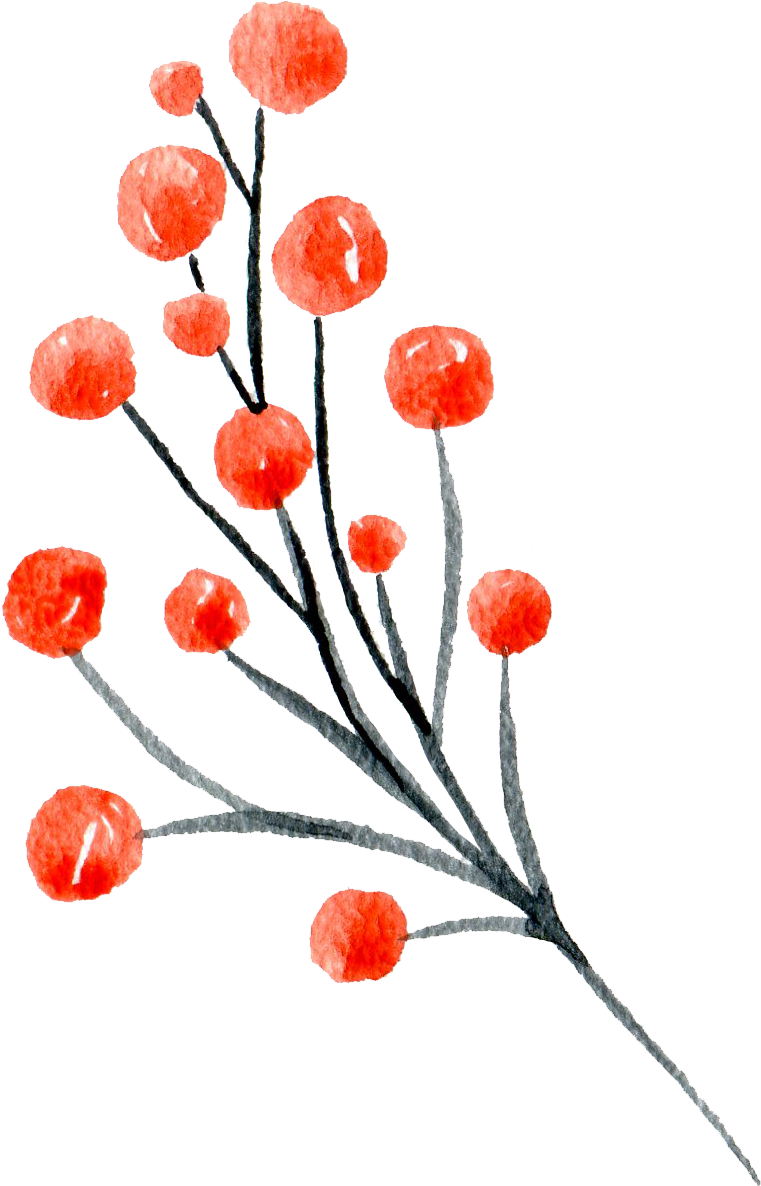 Red Berries.png