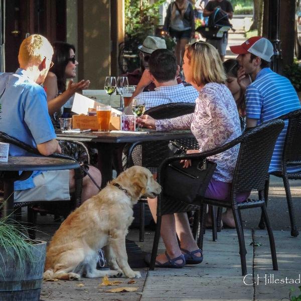 town_restaurant_hillstead.jpg