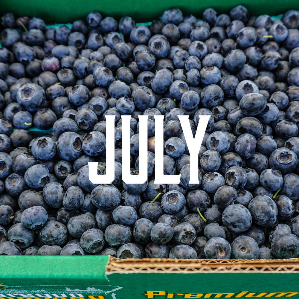 JULY SEASON - Sunny July brings us a wide variety of produce!Apricots, Arugula, Basil, Beets, Blackberries, Blueberries, Boysenberries, Broccoli, Cabbage, Carrots, Cauliflower, Chard, Cherries, Collard Greens, Cucumber, Fennel, Figs, Green Beans, Scallions, Kale, Lettuce, Marionberries, Mint, Mushrooms, Nectarines, Onions, Oregano, Parsley, Peas, Potatoes, Radishes, Raspberries, Rosemary, Snap Peas, Spinach, Summer Squash, Strawberries, Thyme, Tomatoes, Turnips, Zucchini