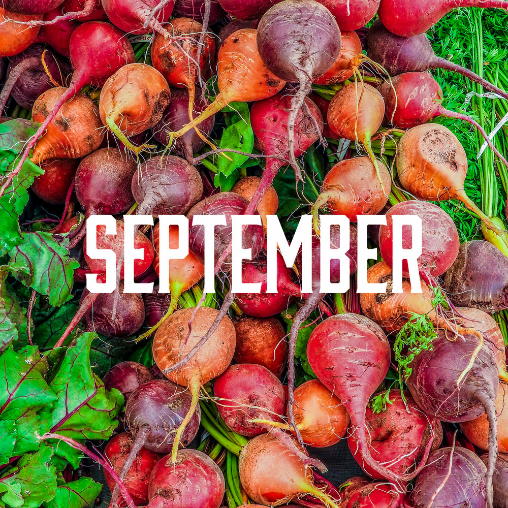 September season - September has the largest amount of produce!Apples, Artichokes, Arugula, Basil, Beets, Blackberries, Blueberries, Broccoli, Brussels Sprouts, Cabbage, Cantaloupes, Carrots, Cauliflower, Celery, Chard, Chili Peppers, Collard Greens, Corn, Cucumber, Eggplant, Fennel, Garlic, Grapes, Green Beans, Scallions, Huckleberries, Kale, Kiwi, Leeks, Lettuce, Melons, Mint, Mushrooms, Onions, Oregano, Parsley, Sweet Peppers, Plums, Potatoes, Radishes, Rosemary, Rutabaga, Shelling Beans, Spinach, Summer Squash, Winter Squash, Thyme, Tomatoes, Turnips, Watermelon, Zucchini