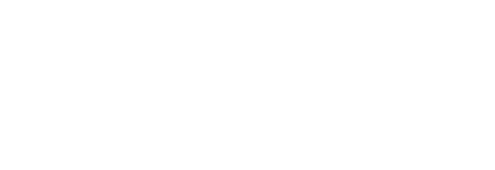 havasgroup-white.png