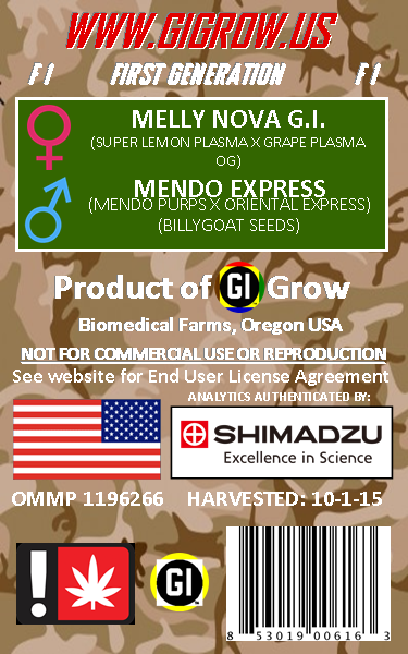 UNCHAINED MELODIE G.I. SATIVA GENETICS