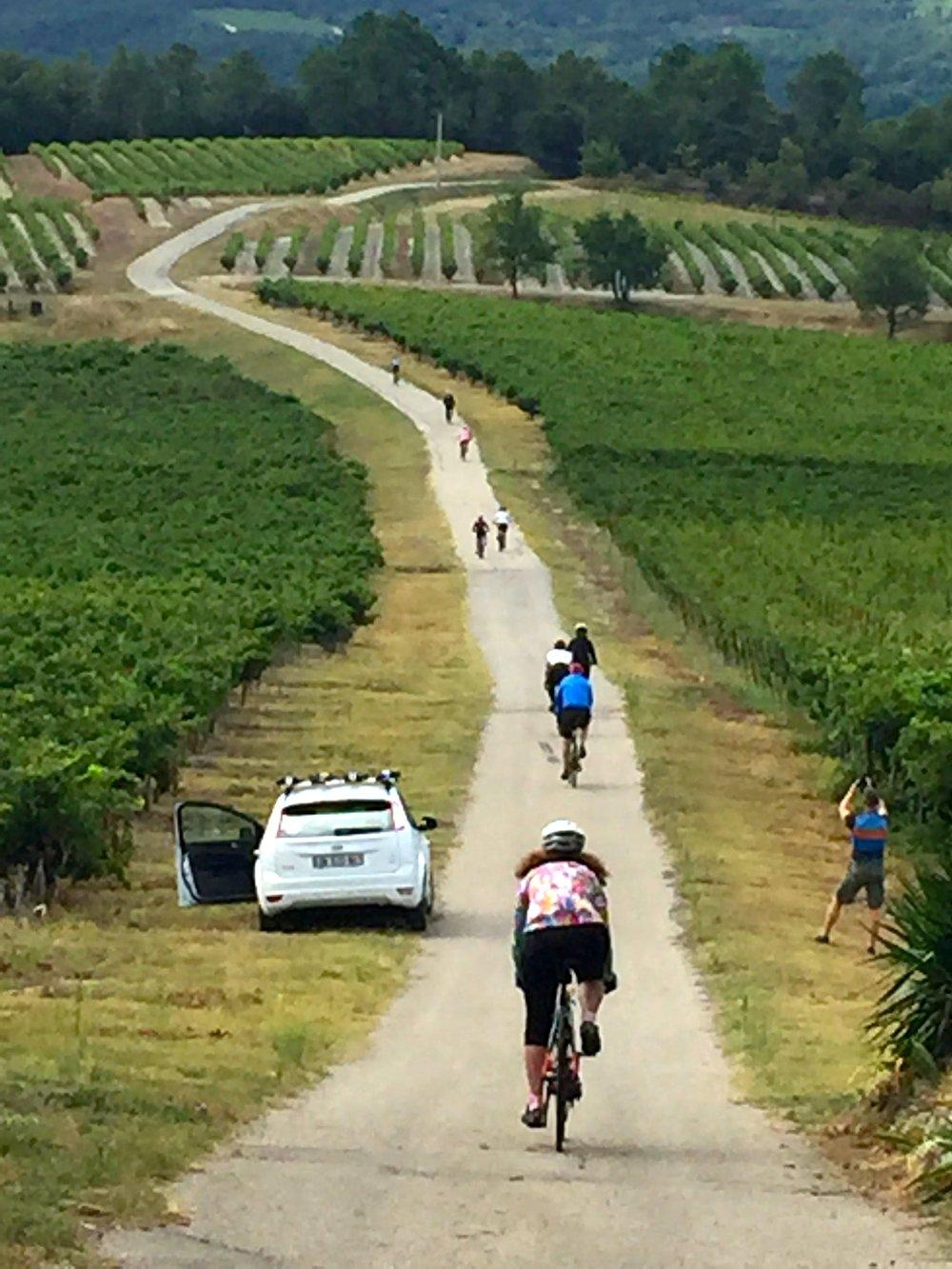 Pedaling a quiet Provençal lane