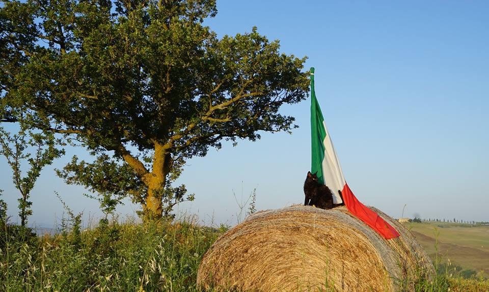 Ciao! - ci vediamo in Italia!
