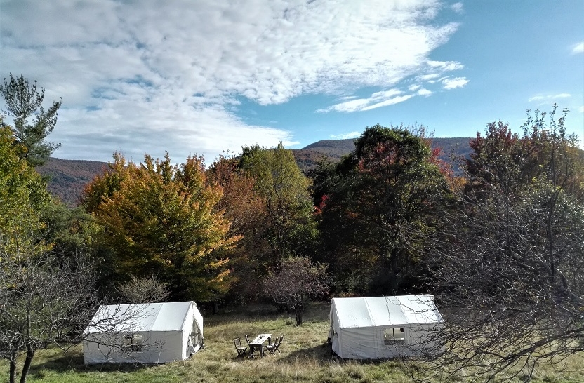 Tent Rental -