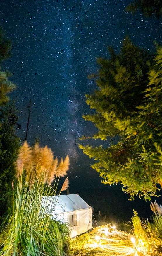 Terra Glamping_Milky Way_2_Jesse_Claudel.jpg