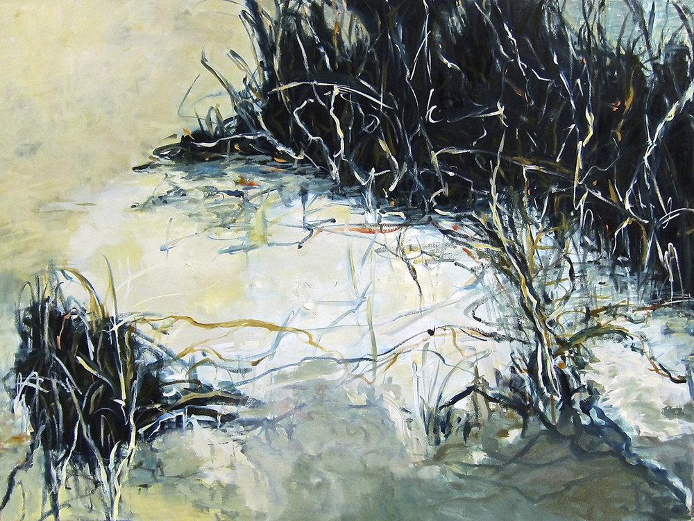 Shadowed Marshland