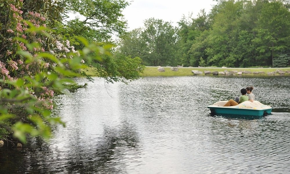 Two Single Kayaks and a Two-person Pedal Boat Available.