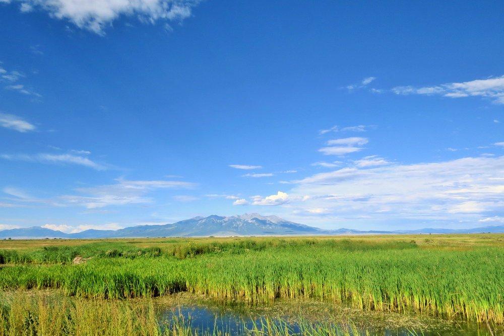 Costilla marsh.jpg