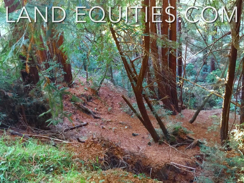 105-081-20 Redwood Dr-19.jpg