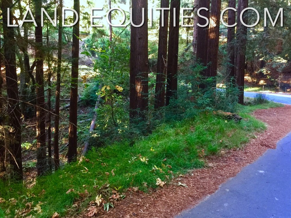 105-081-20 Redwood Dr-15.jpg