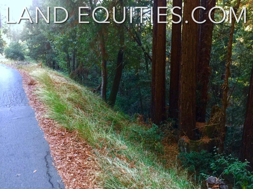 105-081-20 Redwood Dr-22.jpg