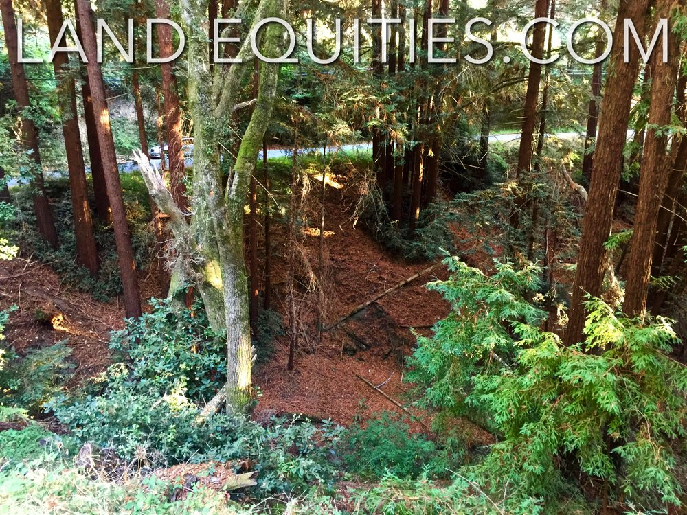 105-081-20 Redwood Dr-39.jpg