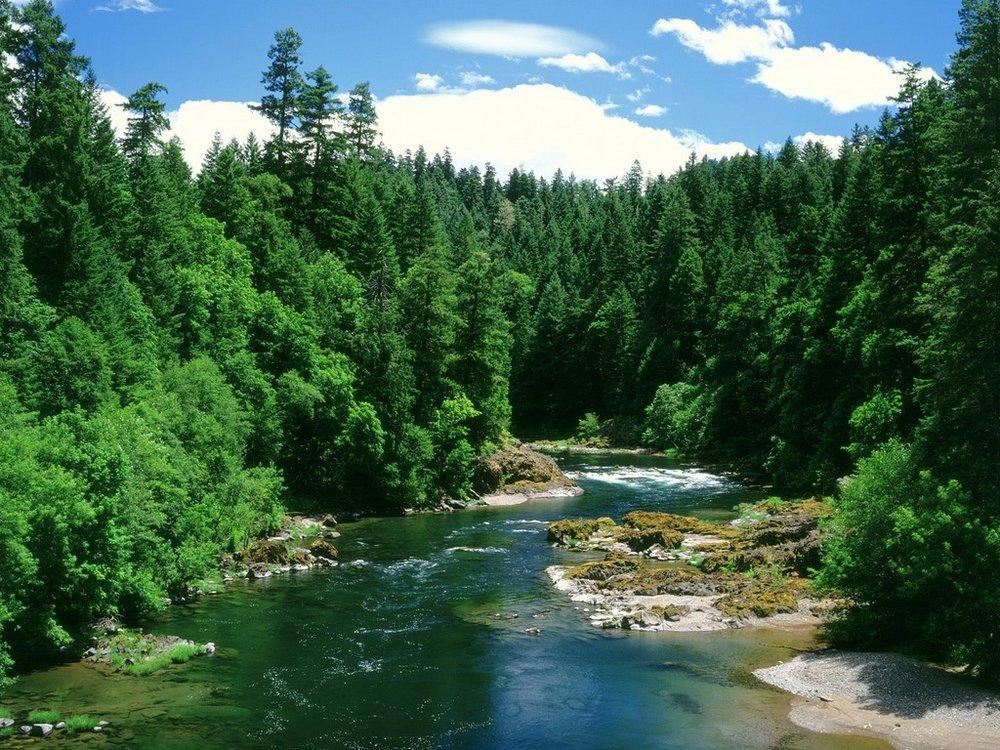 riverpic22.jpg