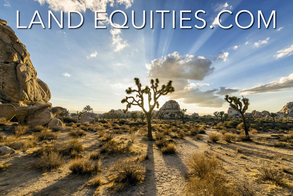 Joshua Tree National Park just 15 minutes away