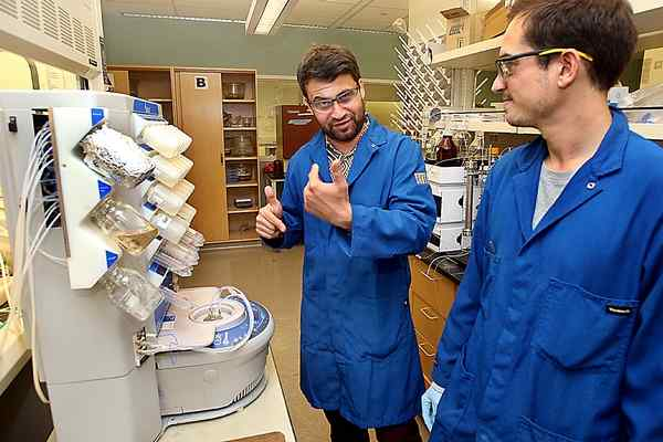 UC Santa Cruz scientists advance Alzheimer's research.  Santa Cruz Sentinel.   Oct. 29, 2016