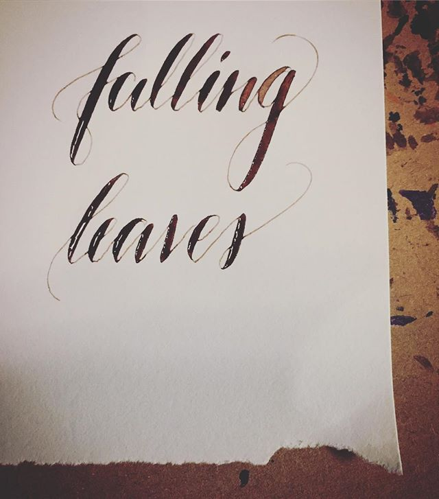#leftycalligraphy #walnutink #brause511 #calligraphy #calligraphynewbie