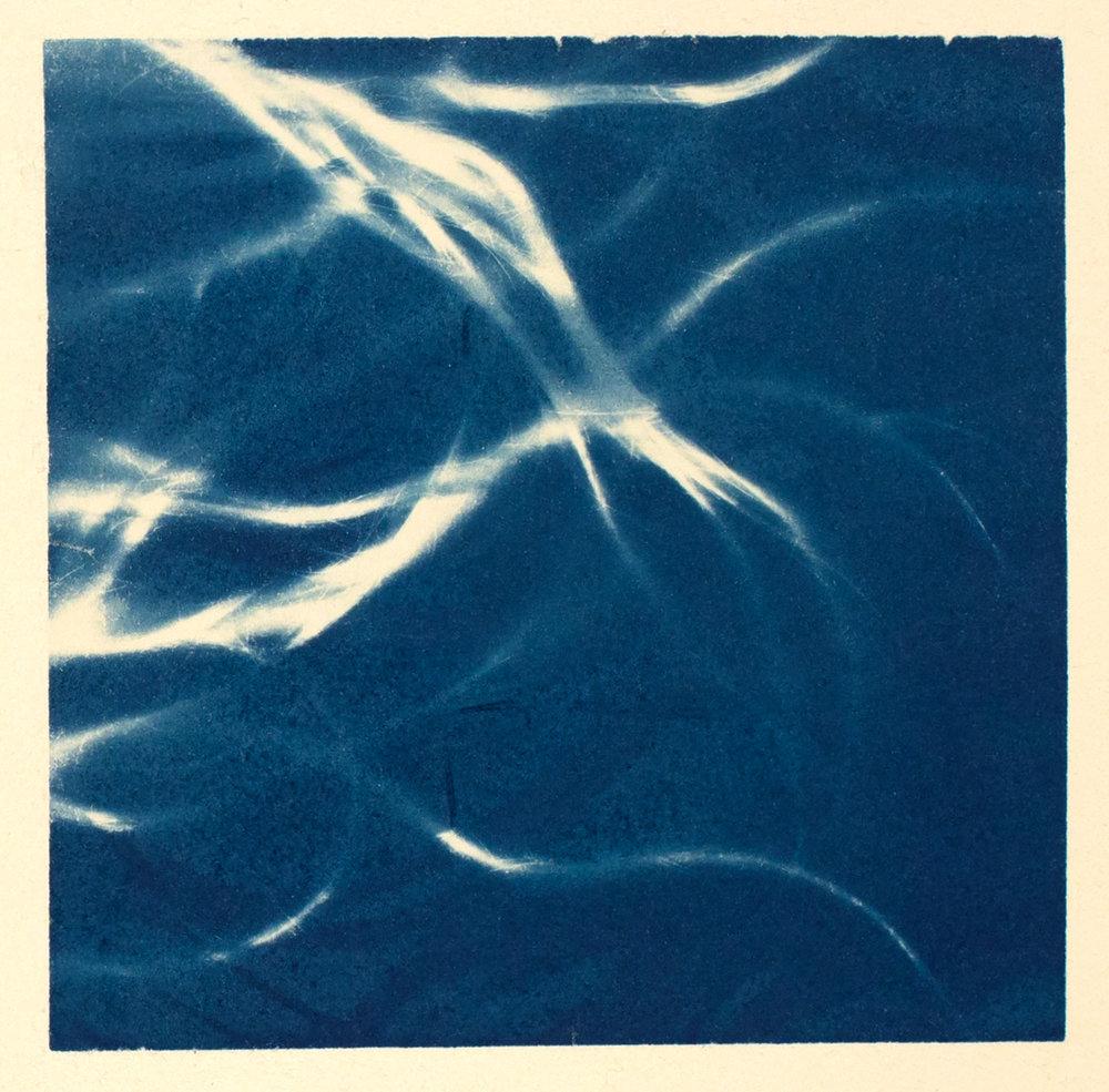 hair  (study II), 2016, cyanotype, 32 x 24 cm