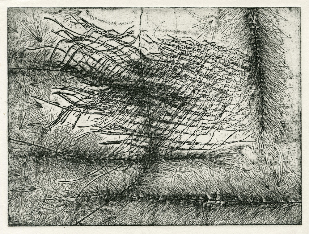 one plate  studio test I, 2015, zinc etching on Hanhnemuhle, 15 x 20 cm
