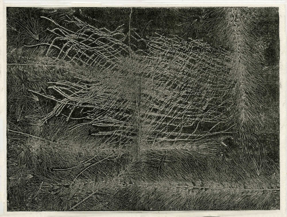 one plate  studio test II, 2015, zinc etching on Hanhnemuhle, 15 x 20 cm