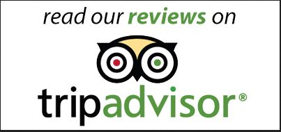tripadvisor read our reviews.JPG