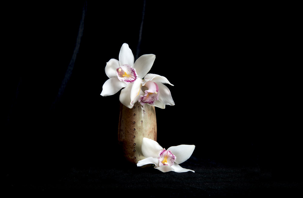 Orchid_retouched.jpg