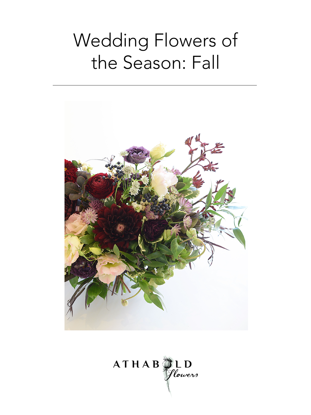 Seasonal Flowers_Fall.png