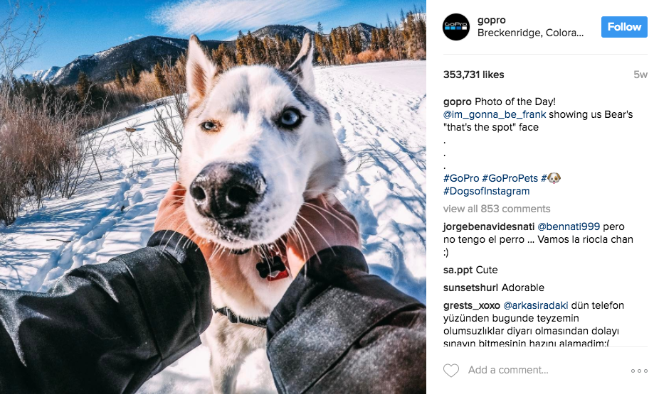 Go Pro uses the majority of user's content for posts - what a great way to thank your fans and spread the love.