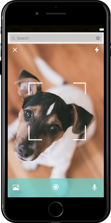 Dog Photo Mode.png
