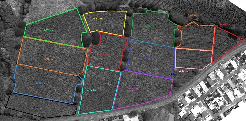 Area 1 Bella Vista.jpg