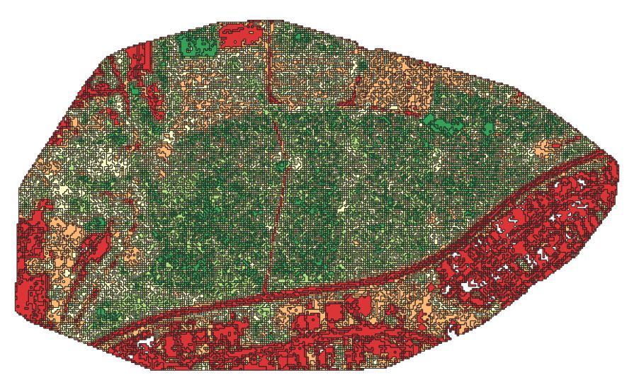 Mapa NDVI Agrupado