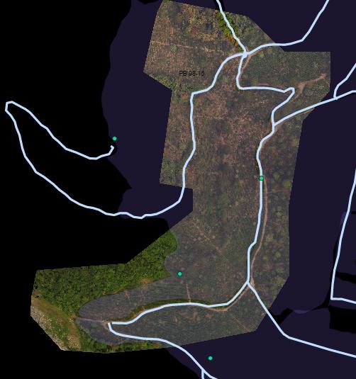area (B)y zonas