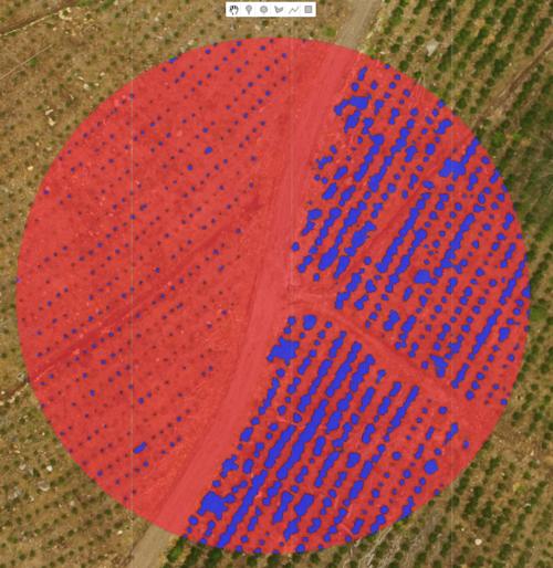 Circle+Feature+1+Area+1+VEGNOVEG.png