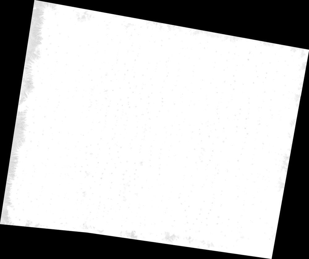 Flor Index 2.jpg