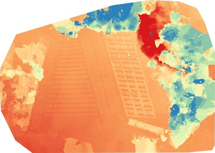 DSM_Color.jpg