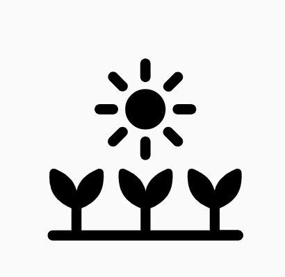 Estado de la plantación -