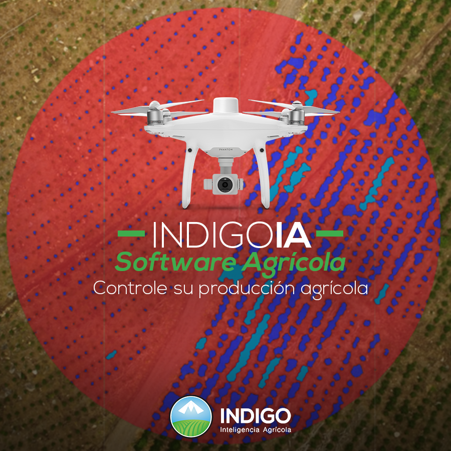 indigoia software