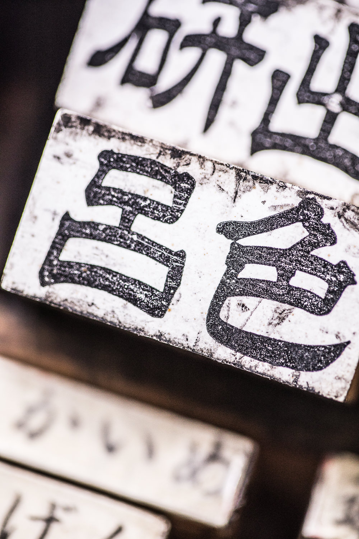 sake no hana.brand book.2017.04-textures.8810.low resolution.jpg
