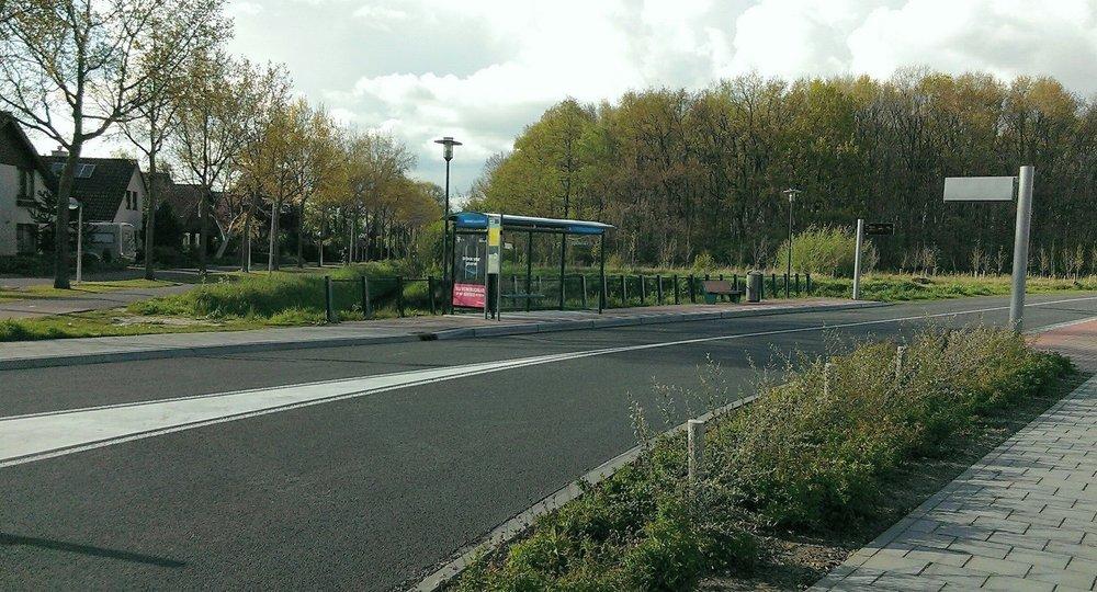 Busbaan bij Dijkgraaf met het Dassenbos op de achtergrond